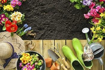 How to get your garden looking great. It's not just the inside that counts when selling.