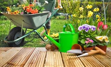 Top tips to make your garden look great for summer!