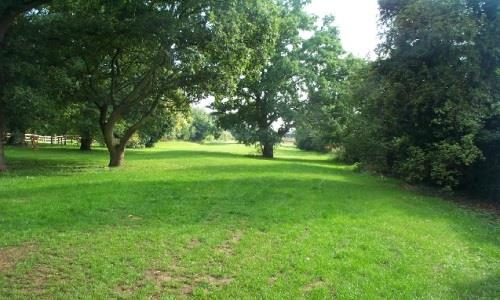 National Nature Reserve boosts Croydon property prices